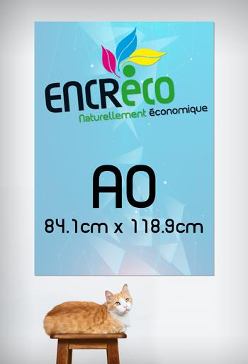 Aperçu du Format A0 (84.1cm x 118.9cm)